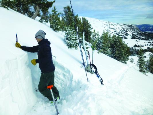 It's never too early to start thinking about snow safety. This photo from 2017  shows Erik Knoff digging a snow pit in the Cooke City area in November. They may not be digging pits yet, but the GNFAC team is out in the field setting up stations and at their computers setting up avalanche safety classes.