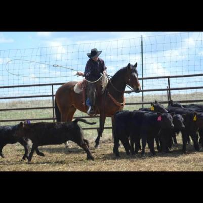 A walking miracle: 16-year-old Gus Hoffman survived a horrific accident a year and a half ago, but has never stopped pursuing his dream of becoming a horse trainer.