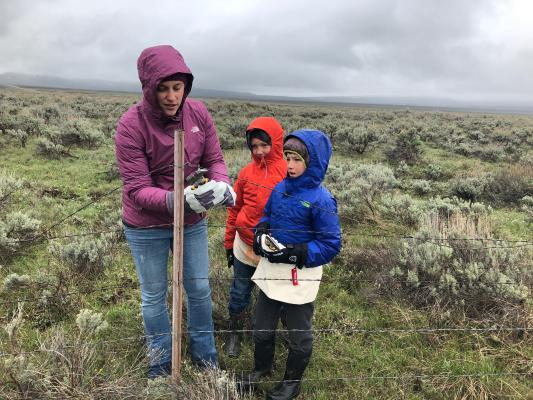 Rachel Caldwell with the National Parks Conservation Association shows Jetty Burke and Wilson Littman how to remove barbed wire with pliers.
