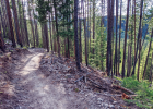This picture was taken during a ride at the top of the Michener loop open to the public last week. Berms, or a banked turn, are included in the flow trails. PHOTO COURTESY KEELY LARSON