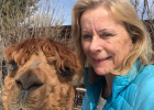 Evi Dixon with one of her alpacas. She learned to shear the animals after getting them initially to take care of the grass on her property. PHOTO COURTESY EVI DIXON